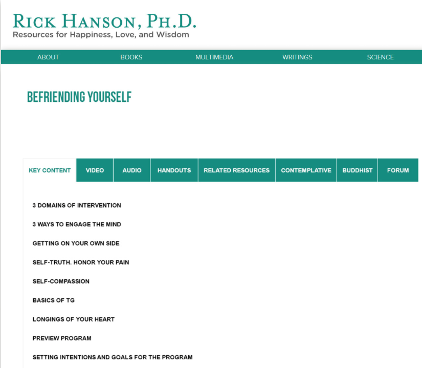 rick hanson foundations of wellbeing key content