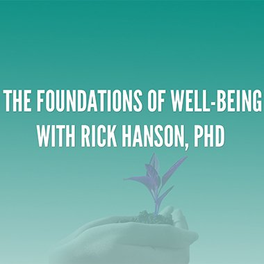 THE FOUNDATIONS OF WELL-BEING
